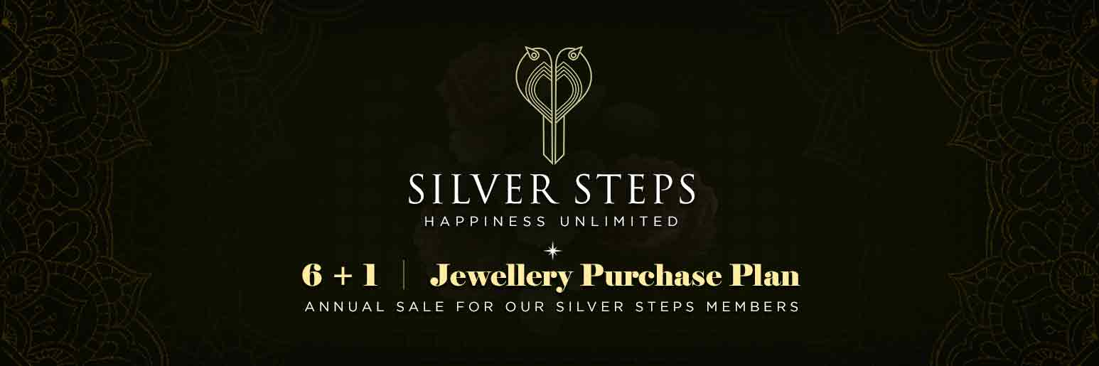 Silver Steps Investment Plan